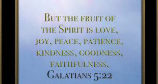 But the fruit of the Spirit is love, joy, peace, patience, kindness, goodness, faithfulness,... Galatians 5:22